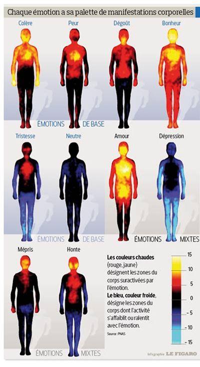 manifestations corporelles fréquentes des émotions